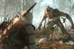 The_Witcher_3_Wild_Hunt_Geralt_fighting_a_werewolf_in_No_Man_s_Land